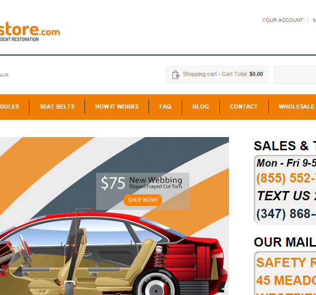 Safetyrestore.com
